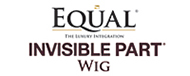 Equal Invisible Part Wig