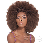 Janet Collection Synthetic Braid - AFRO KINKY BULK 24