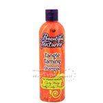 Beautiful Textures Tangle Taming Moisturizing Shampoo 12oz