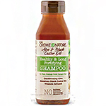 Creme Of Nature Aloe & Black Castor Oil Healthy & Long Fortifying Shampoo 12oz