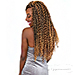 Janet Collection Synthetic Braid - PASSION WATER WAVE 24